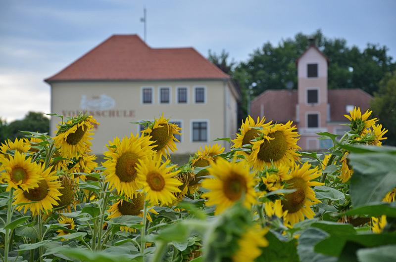 Die Schule im Sonnendorf Hackerberg