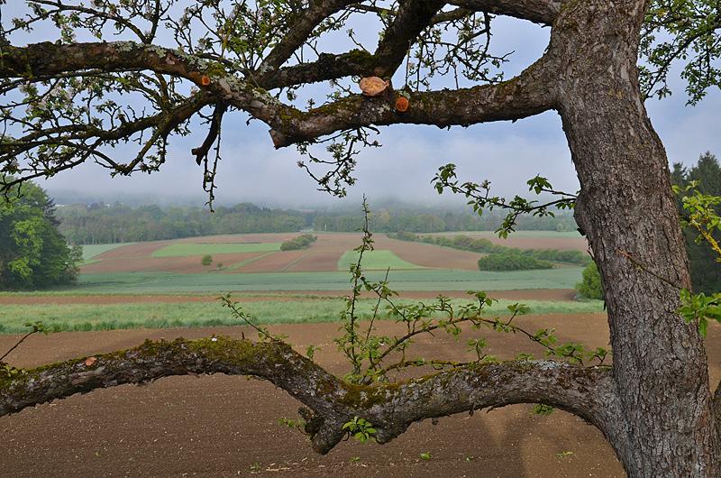 Blick in Richtung Steiermark